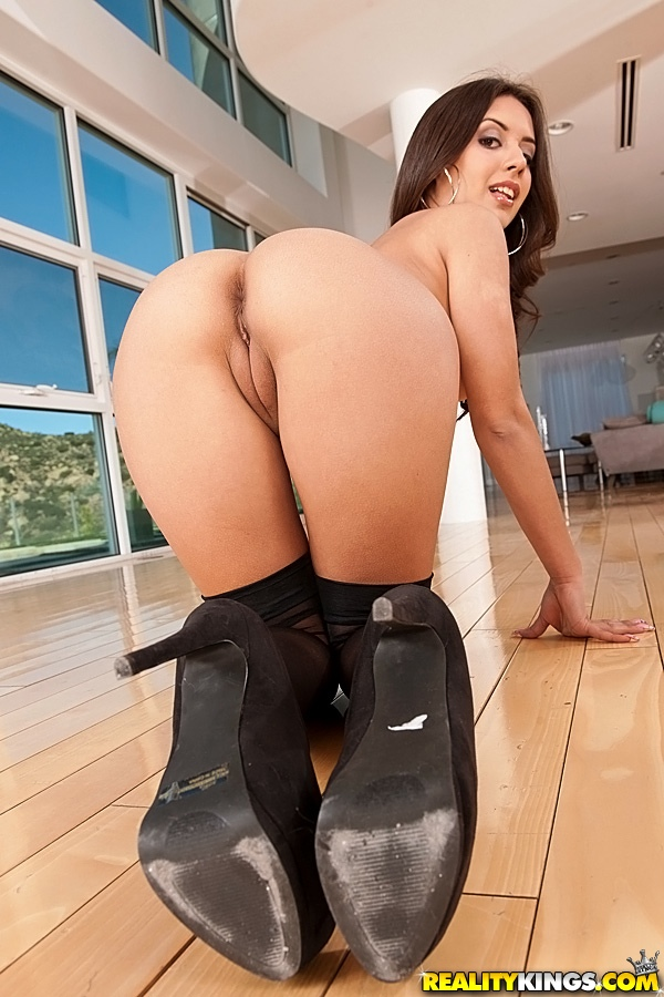 Jynx Maze All Fours